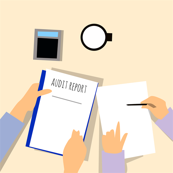 The Department of Labor Audit Selection