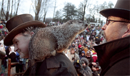 Dental Sealants and Punxsutawney Phil