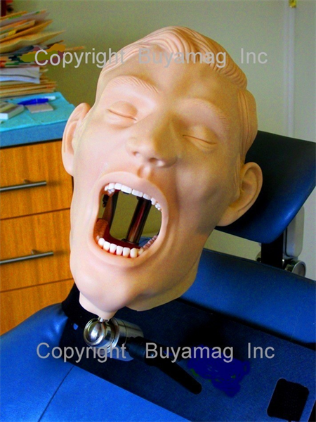 BUYAMAG INC OFFER DENTIST PRACTICE INCREASER 6 MODELS SET. SHOWS PATIENTS EXACTLY HOW THE COMPLETE DENTAL WORK LOOKS LIKE