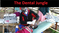The Dental Jungle – Web Centric Marketing Focus