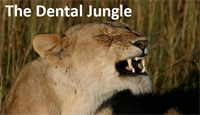 The Big Five in Dentistry