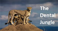 The Dental Jungle – Web Centric Marketing Focus