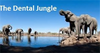 The Dental Jungle – Eliminate Wasted Time