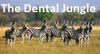 The Dental Jungle – Operatories