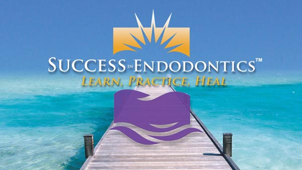 Jeffrey Krupp DDS, MS Success In Endodontics